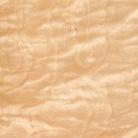 Birch Curly, Quilted
